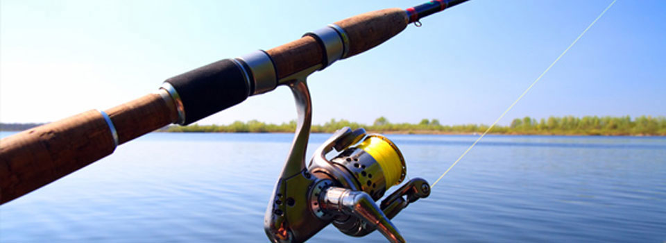 Fishing Poles Handles